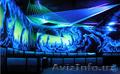 флуоресцентная краска,  незабываемый дизайн
