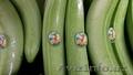 бананы продам и фрукты - Изображение #2, Объявление #268986